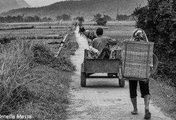 Vietnam Massa11_DSCF3722-Modifica