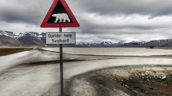 Svalbard-4356