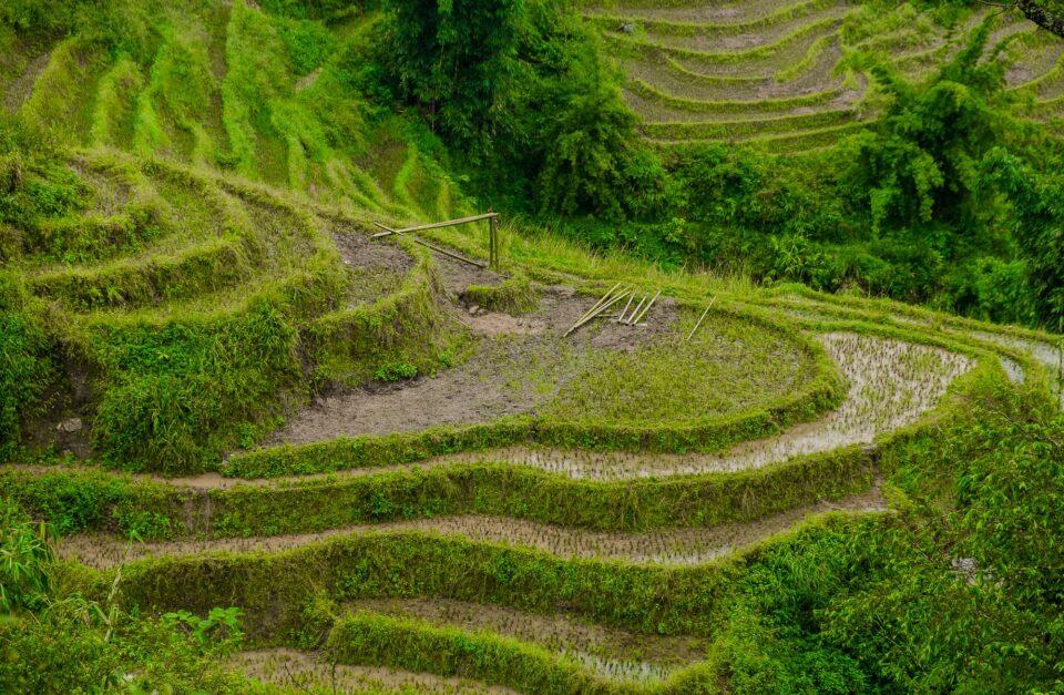 Vietnam rurale del Nord e Baia di Halong