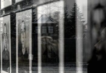 Auschwitz-Enrico-Cambiaso